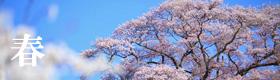春のギャラリー
