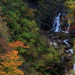 2016-10-15_福島市紅葉