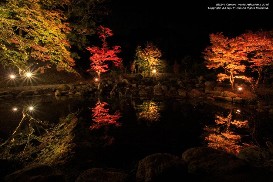 2016-11-06_真照寺のライトアップ