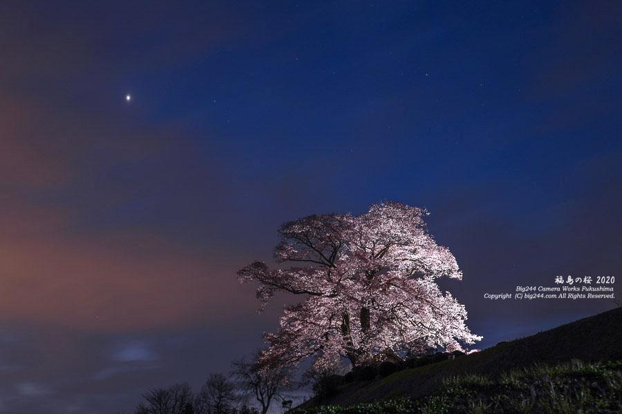 2020-04-09_七草木天神桜-星景