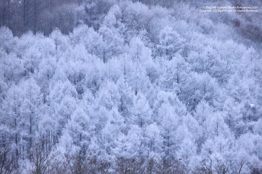 2021-01-17_裏磐梯曽原湖-霧氷