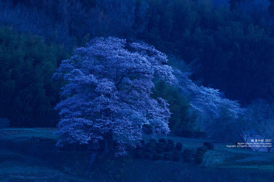 2021-04-02_三春町-七草木天神桜-IMG_1369_300dpi_LRC